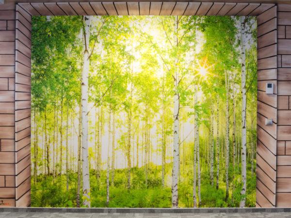 fototapety Twinart - tapeta se stromy