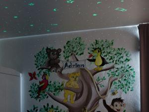 iluzivní malby hvězdné stropy